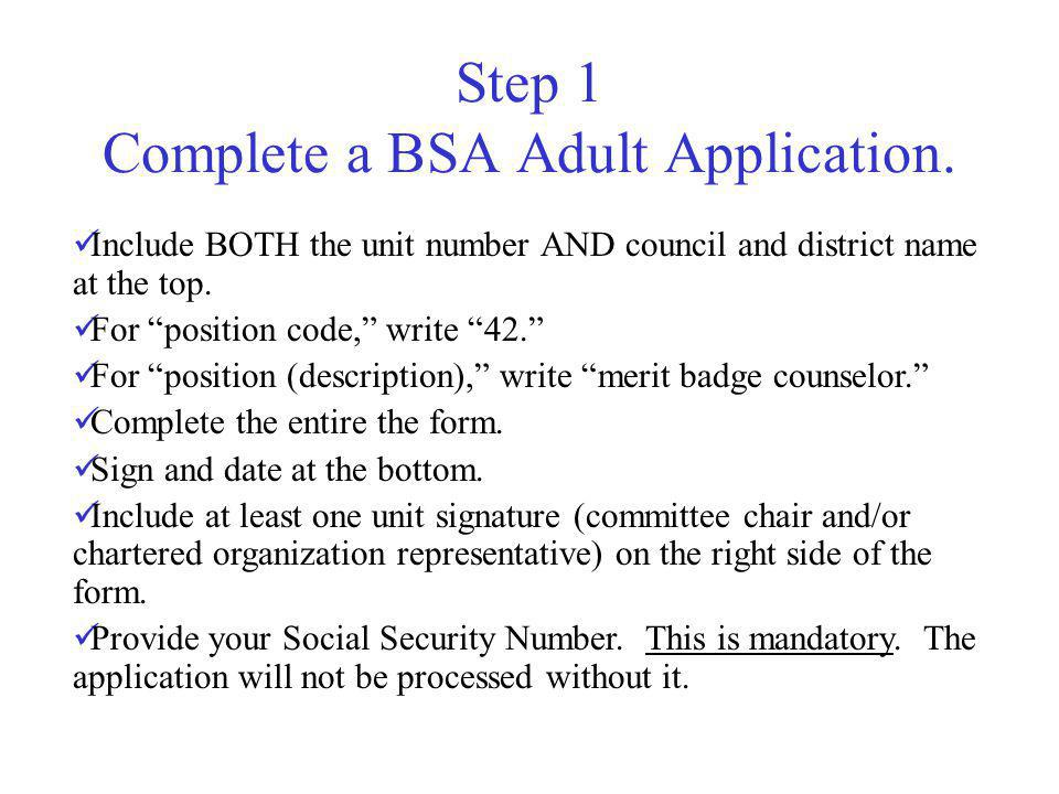 bsa adult job descriptions