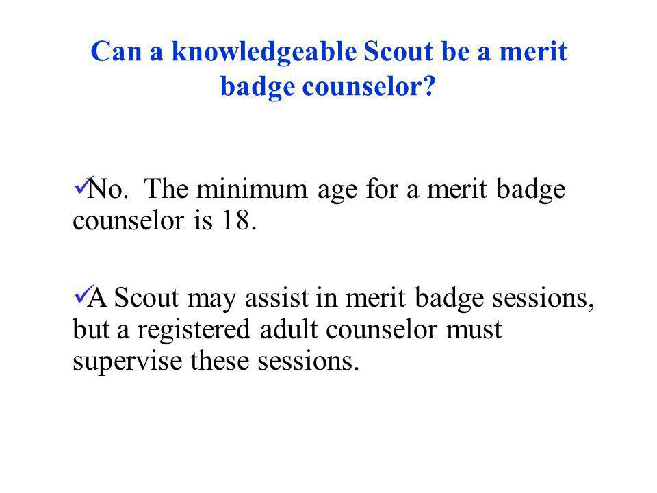 Can a knowledgeable Scout be a merit badge counselor
