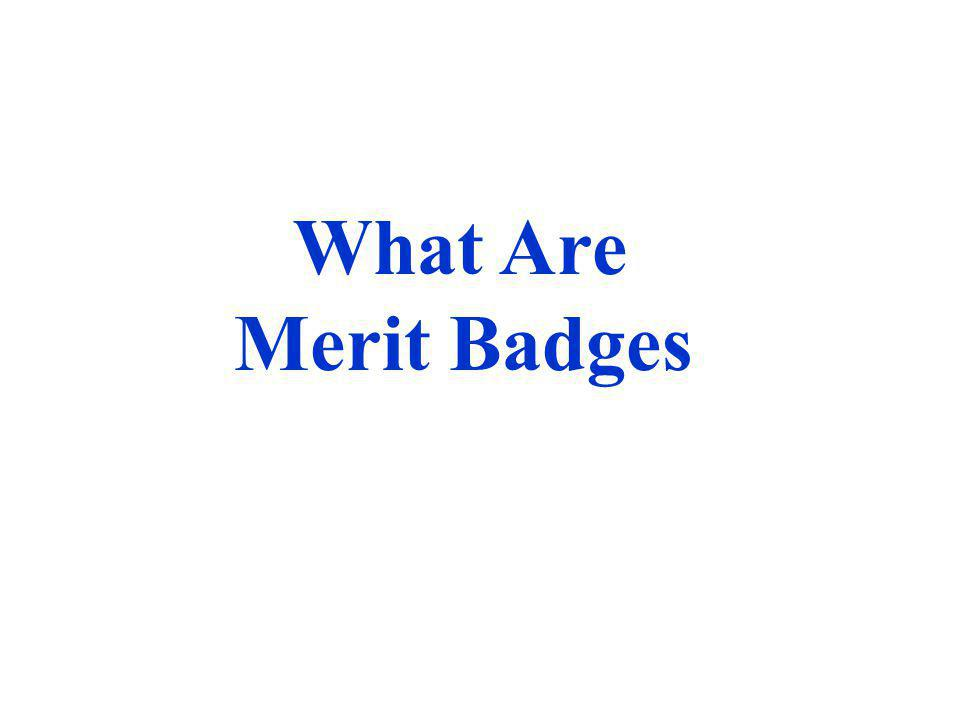 What Are Merit Badges