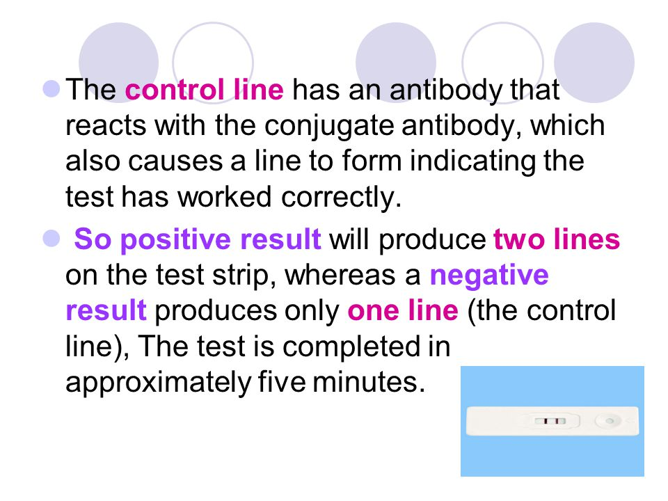 The control line has an antibody that reacts with the conjugate antibody, which also causes a line to form indicating the test has worked correctly.