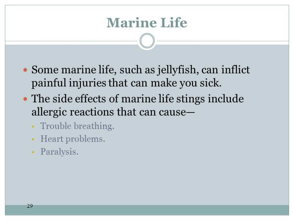 Marine Life Some marine life, such as jellyfish, can inflict painful injuries that can make you sick.