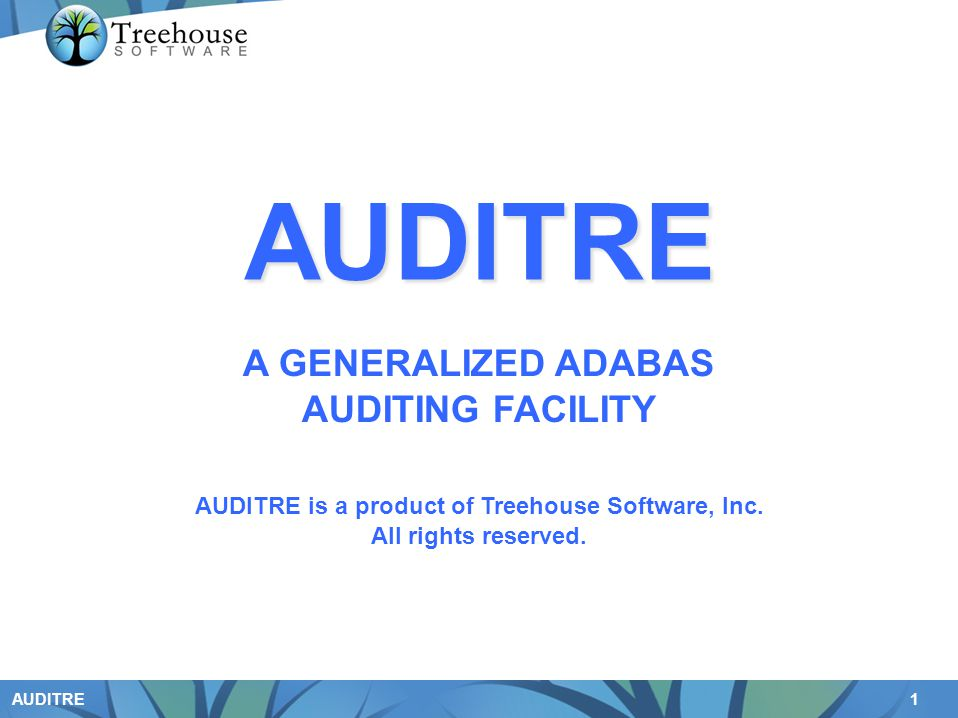 AUDITRE is a product of Treehouse Software, Inc.