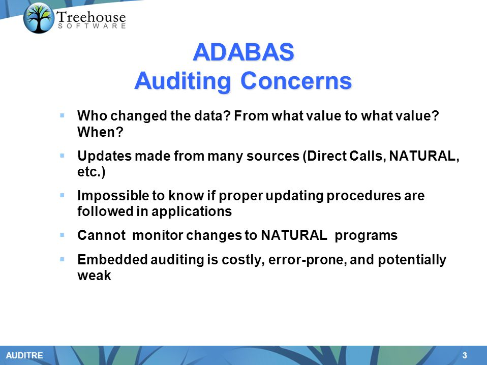ADABAS Auditing Concerns