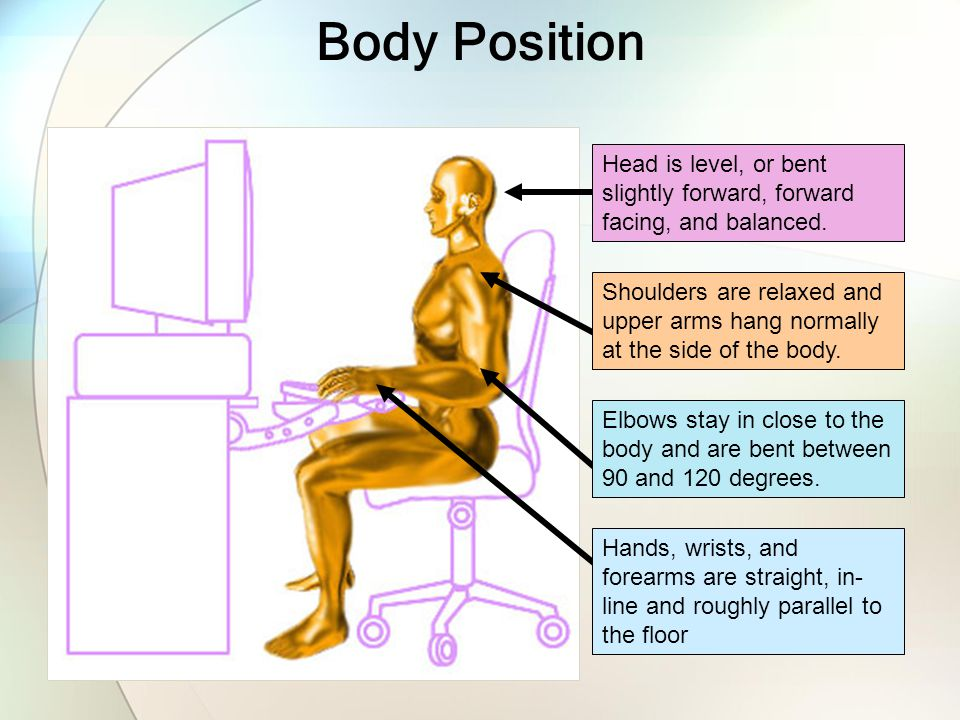 Body Position Head is level, or bent slightly forward, forward facing, and balanced.