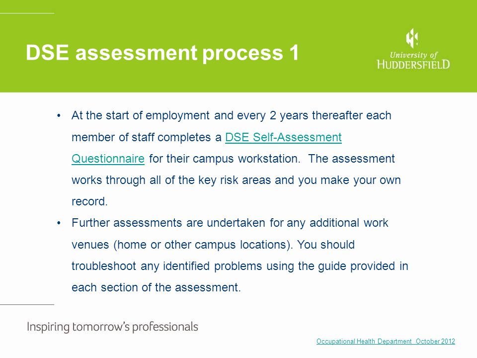 DSE assessment process 1