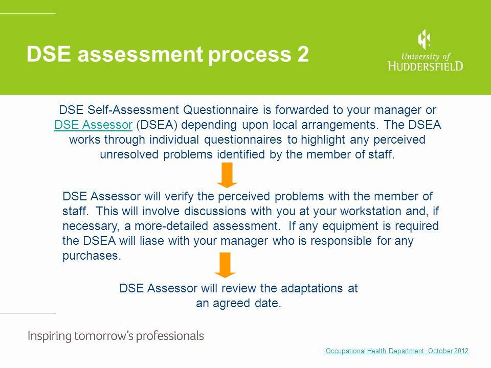 DSE assessment process 2