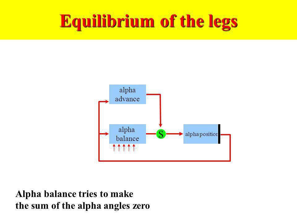 Equilibrium of the legs