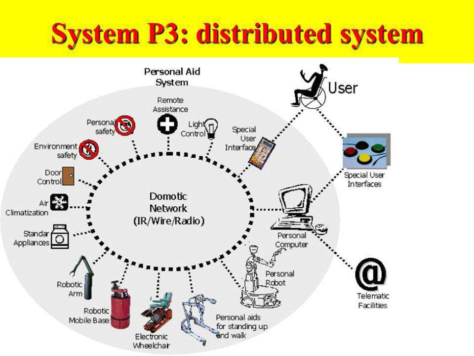 System P3: distributed system