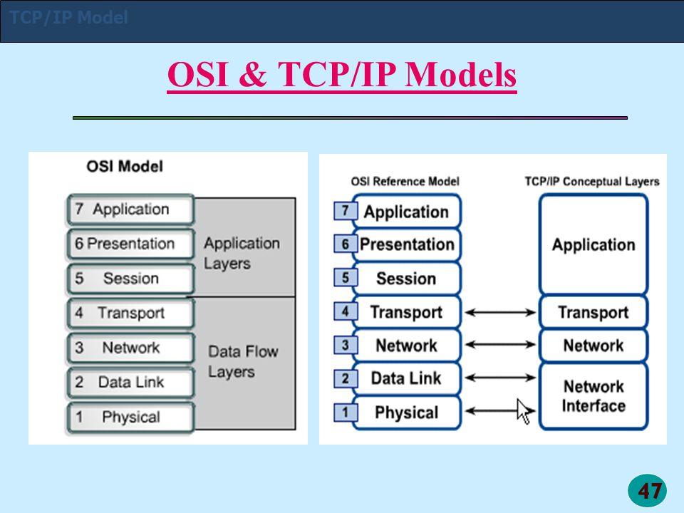 TCP/IP Model OSI & TCP/IP Models