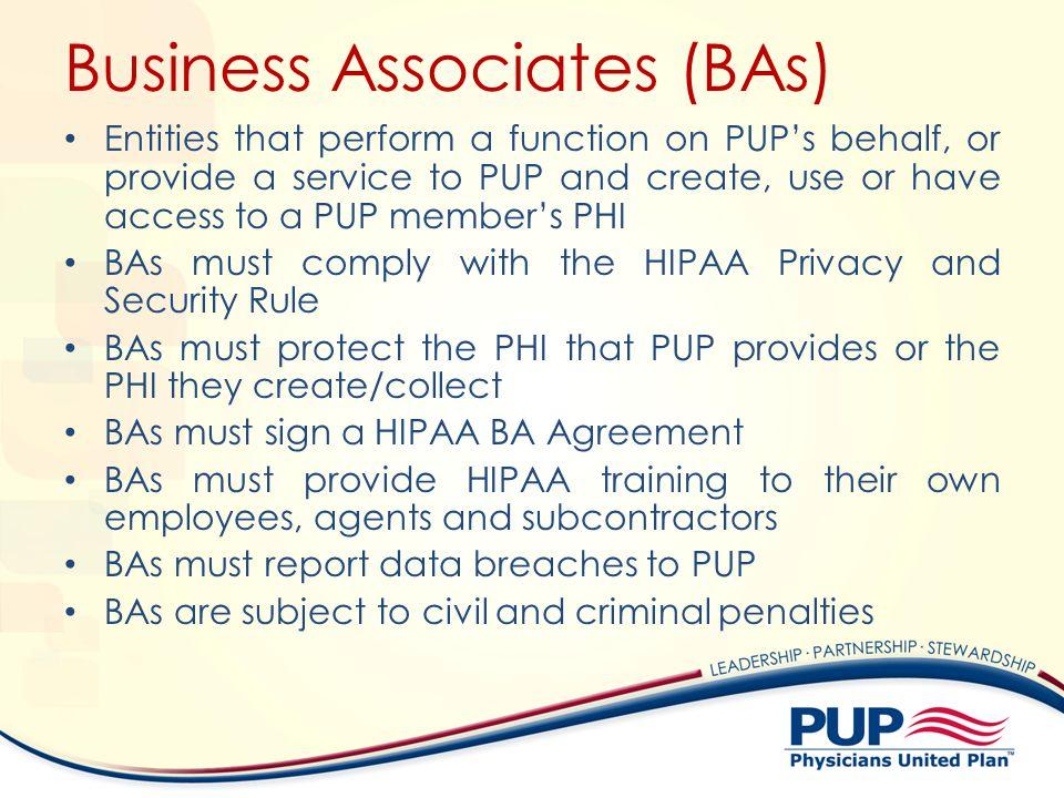 Business Associates (BAs)