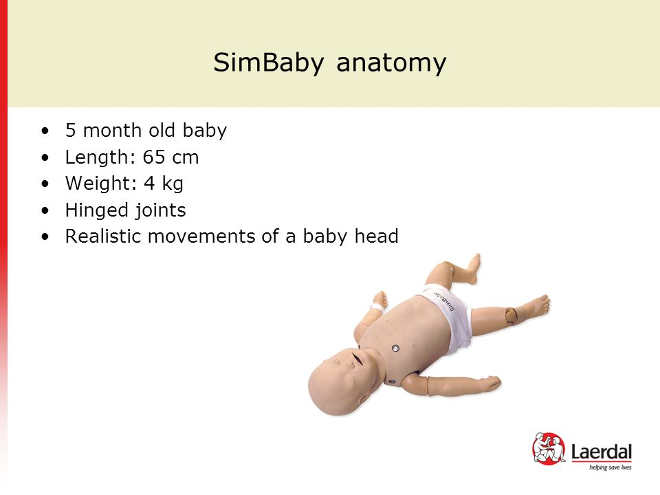 SimBaby anatomy 5 month old baby Length: 65 cm Weight: 4 kg