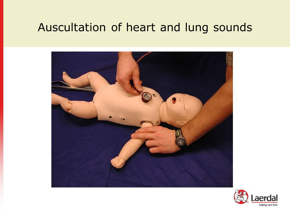 Auscultation of heart and lung sounds