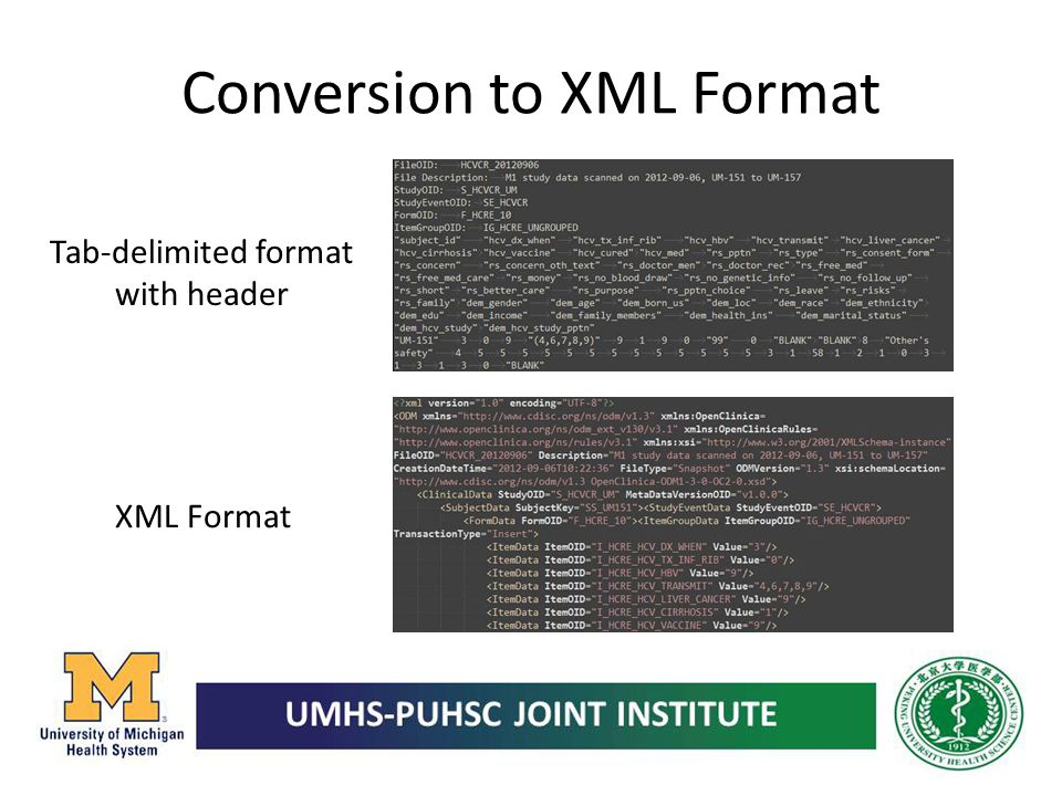 Conversion to XML Format