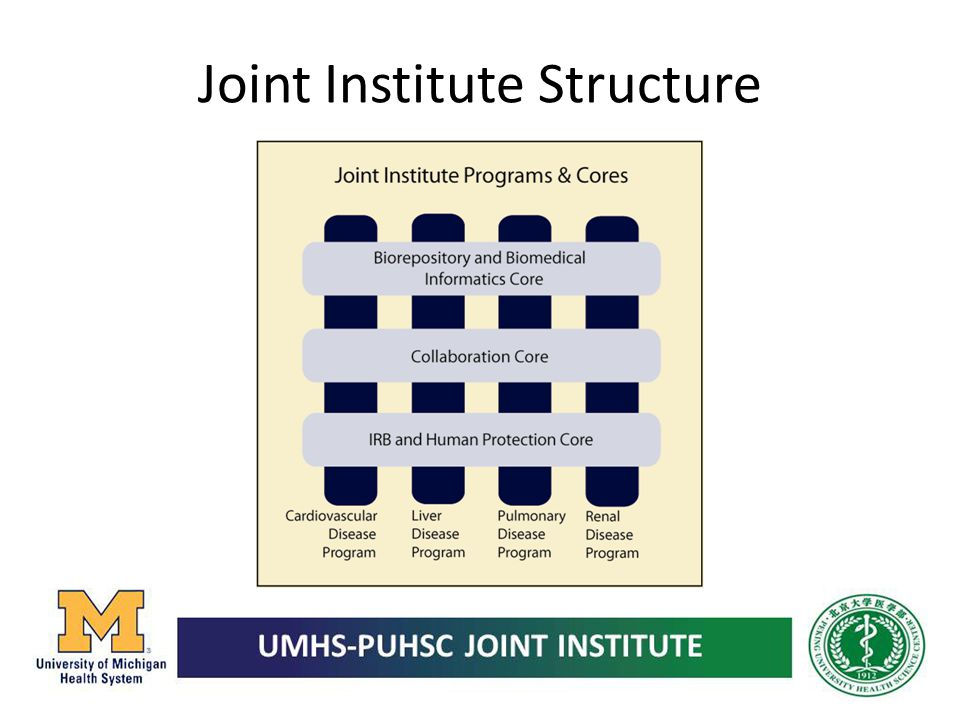 Joint Institute Structure