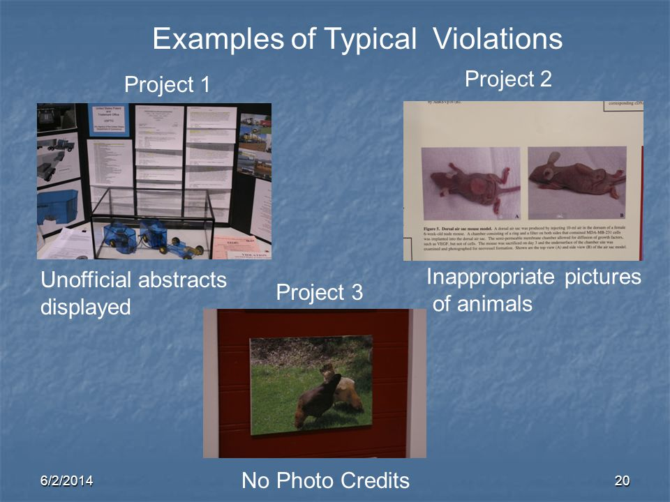 Examples of Typical Violations