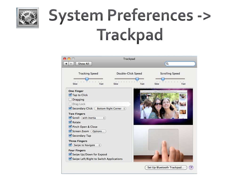 System Preferences -> Trackpad