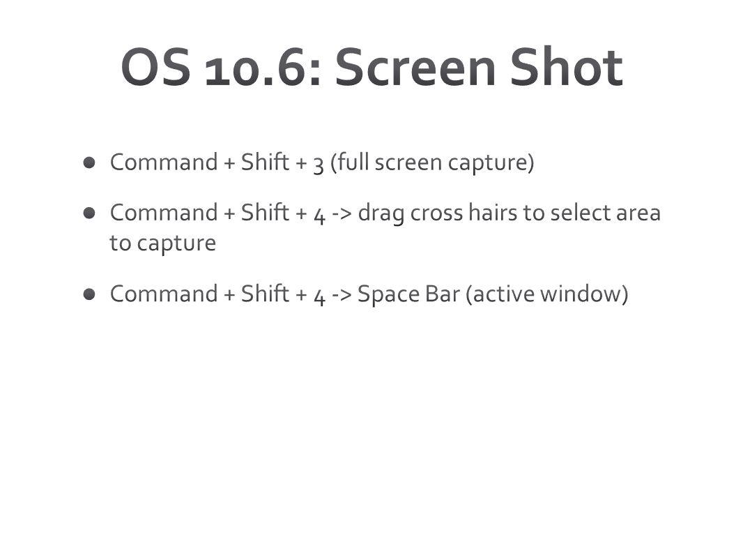 OS 10.6: Screen Shot Command + Shift + 3 (full screen capture)
