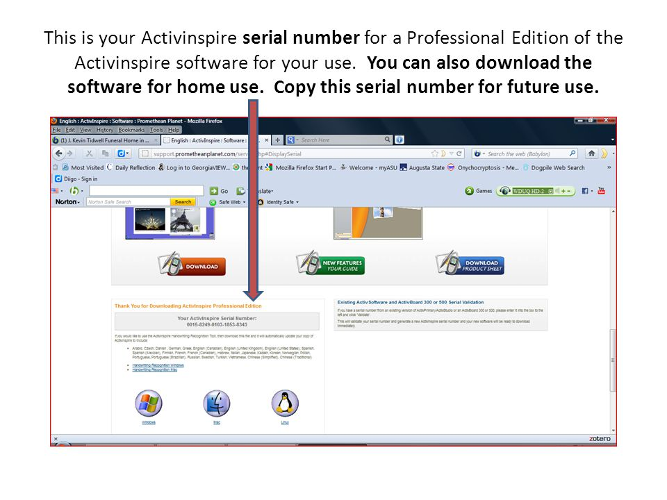 This is your Activinspire serial number for a Professional Edition of the Activinspire software for your use.