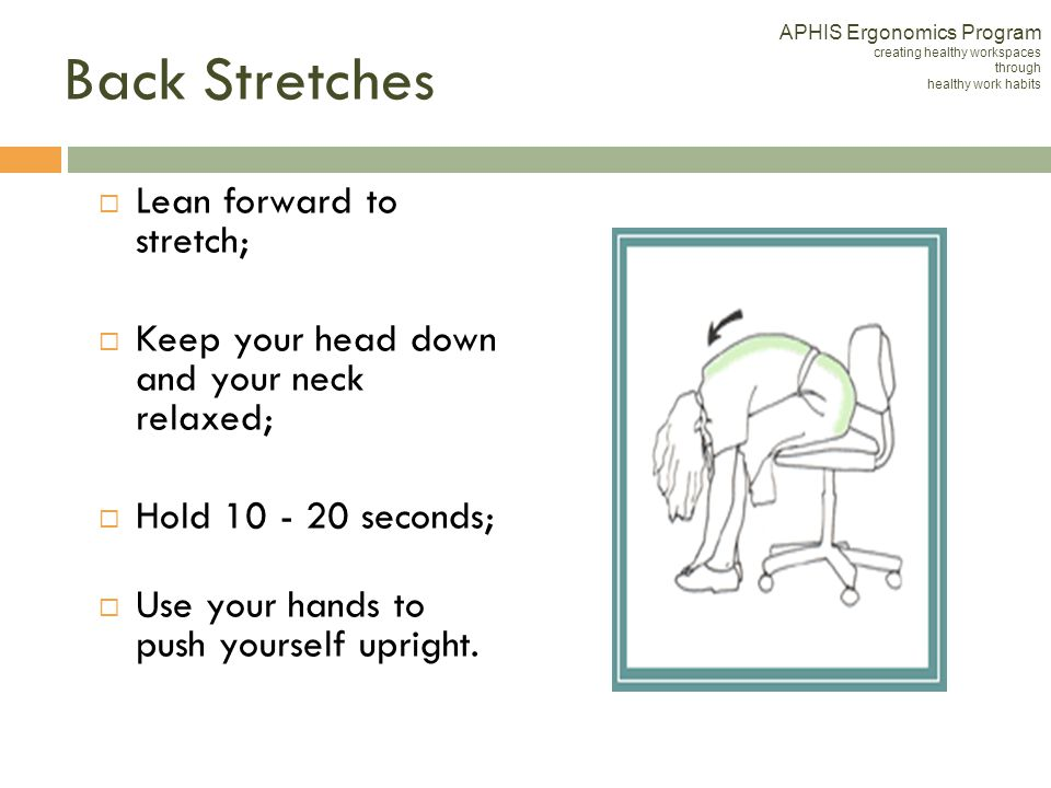 Back Stretches Lean forward to stretch;