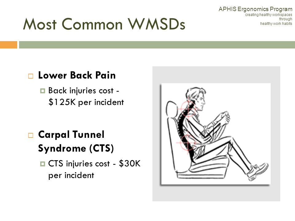 Most Common WMSDs Lower Back Pain Carpal Tunnel Syndrome (CTS)