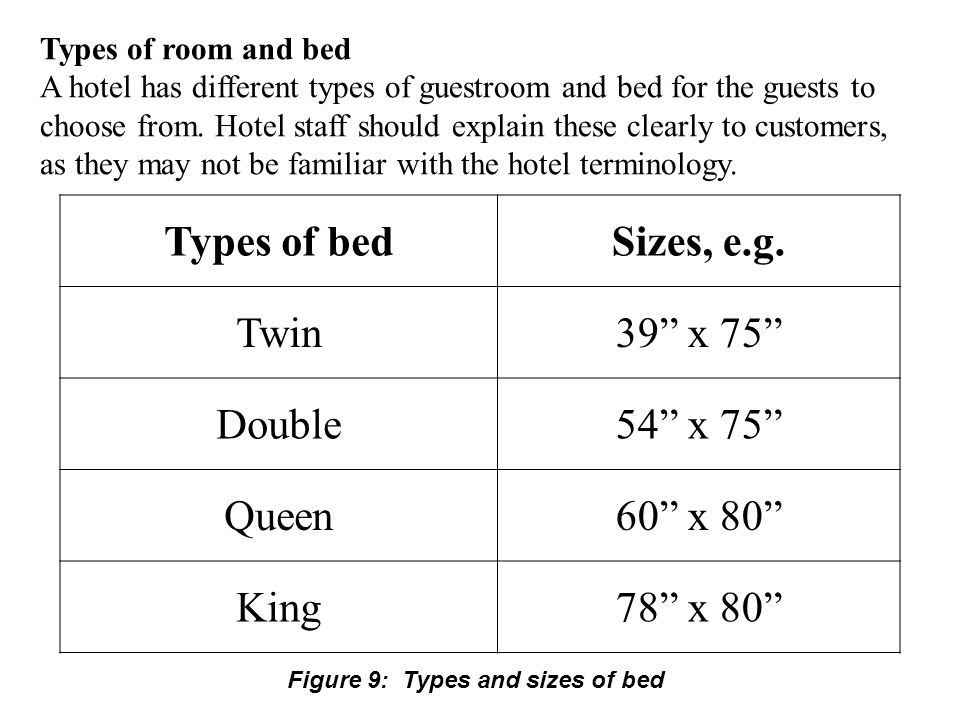 Types of bed Sizes, e.g. Twin 39 x 75 Double 54 x 75 Queen