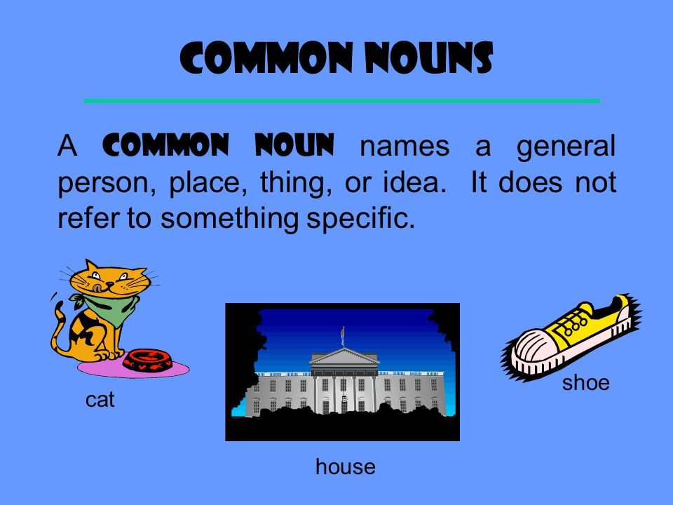 Common Nouns A COMMON NOUN names a general person, place, thing, or idea. It does not refer to something specific.