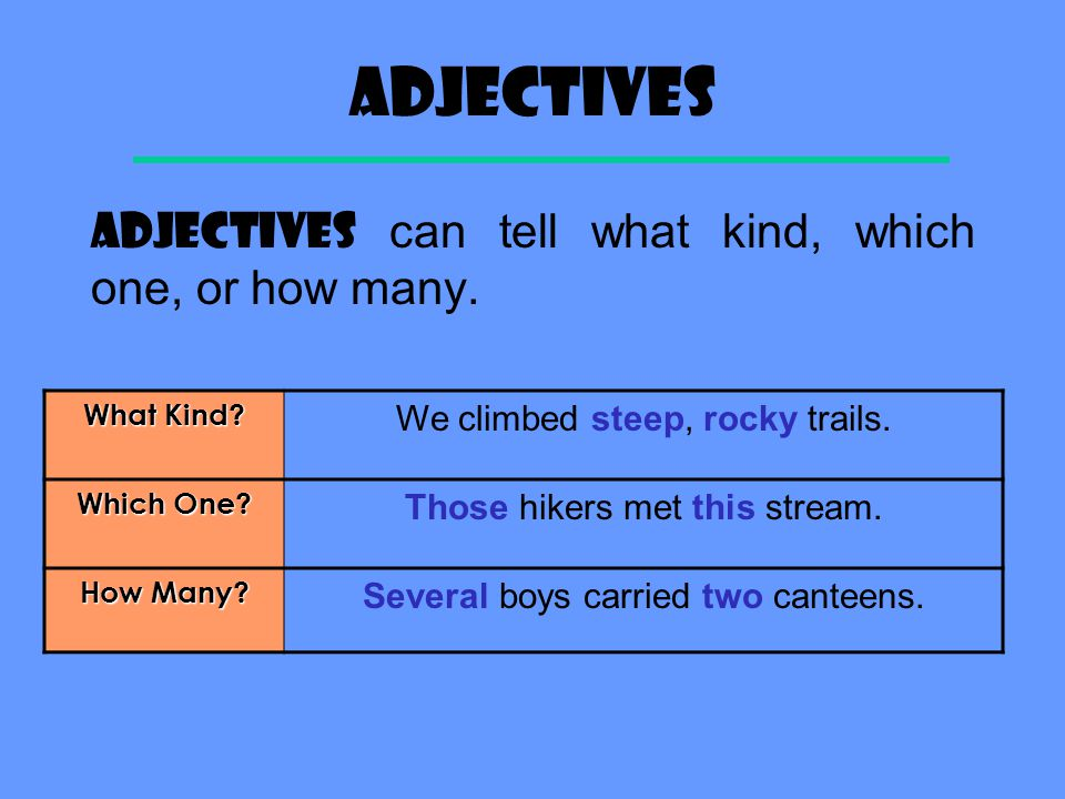 Adjectives ADJECTIVES can tell what kind, which one, or how many.