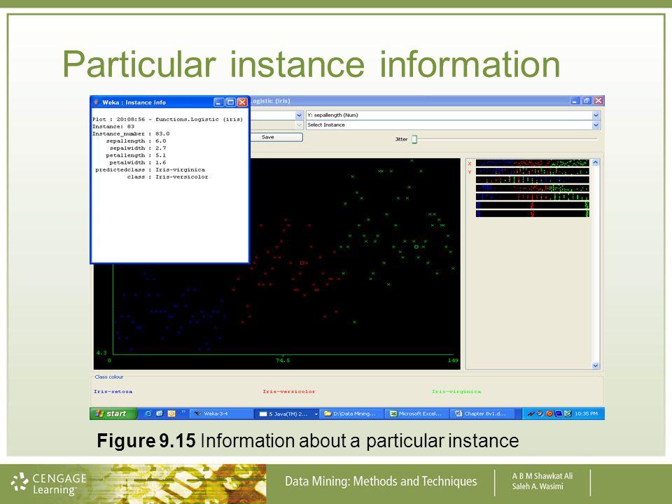 Particular instance information