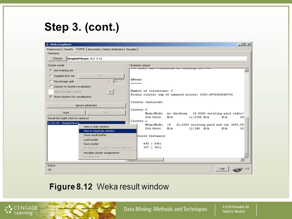 Step 3. (cont.) Figure 8.12 Weka result window