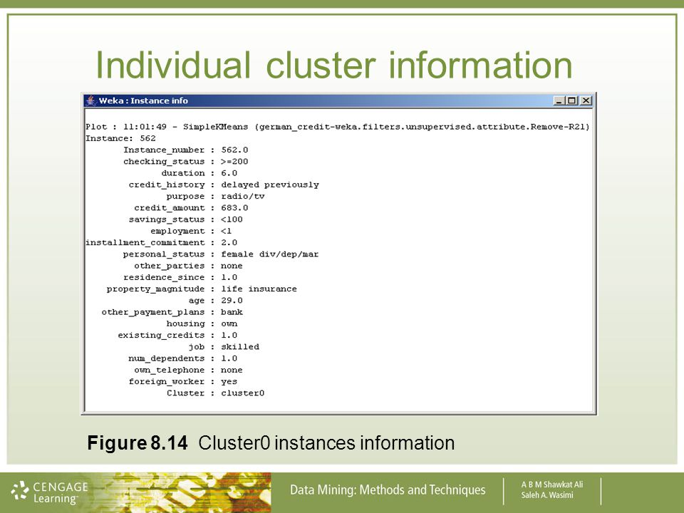 Individual cluster information