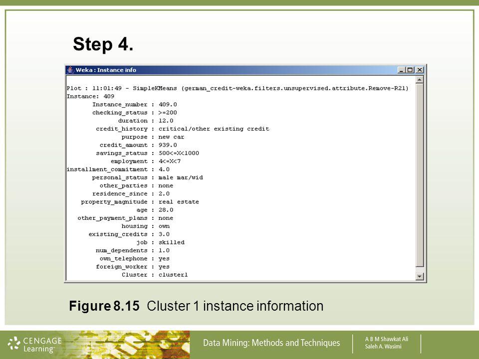 Step 4. Figure 8.15 Cluster 1 instance information