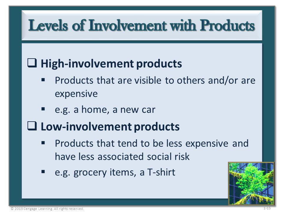 Levels of Involvement with Products
