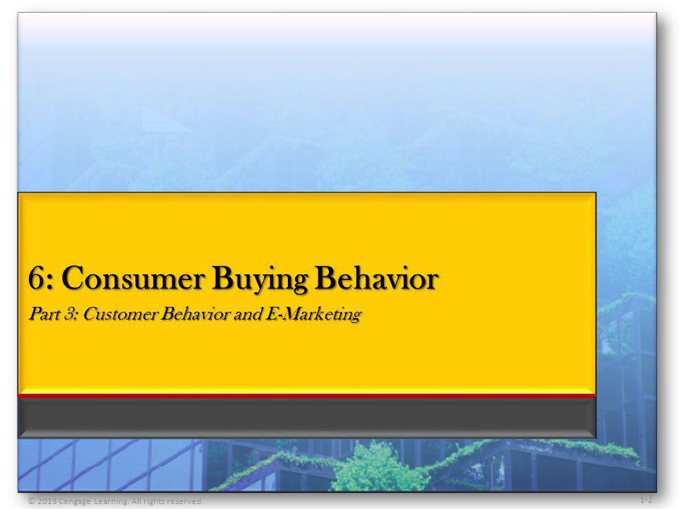 6: Consumer Buying Behavior Part 3: Customer Behavior and E-Marketing