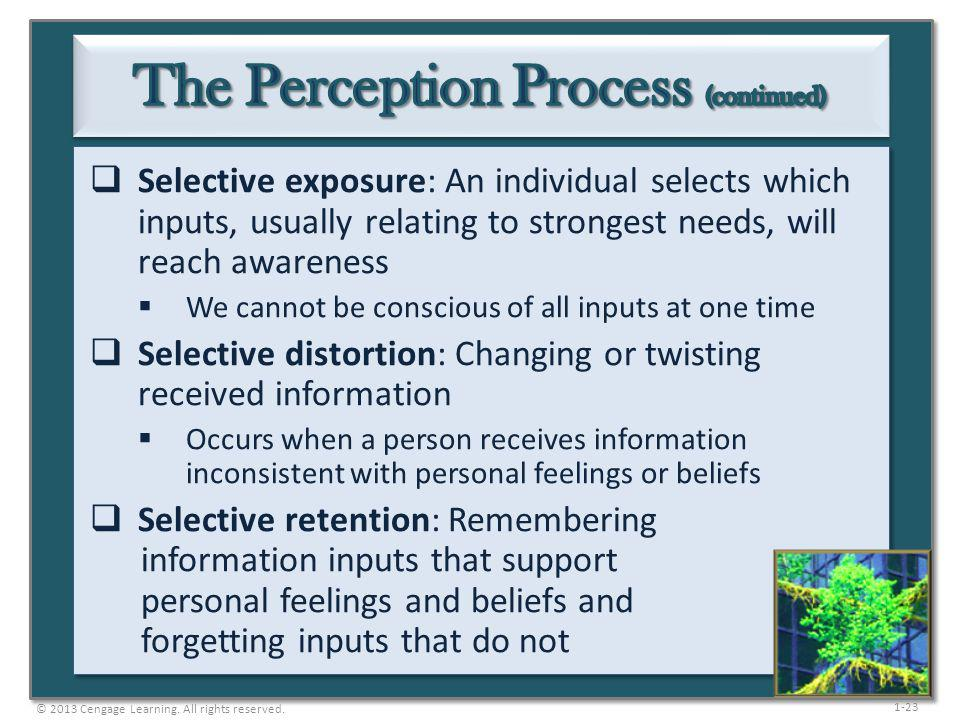 The Perception Process (continued)