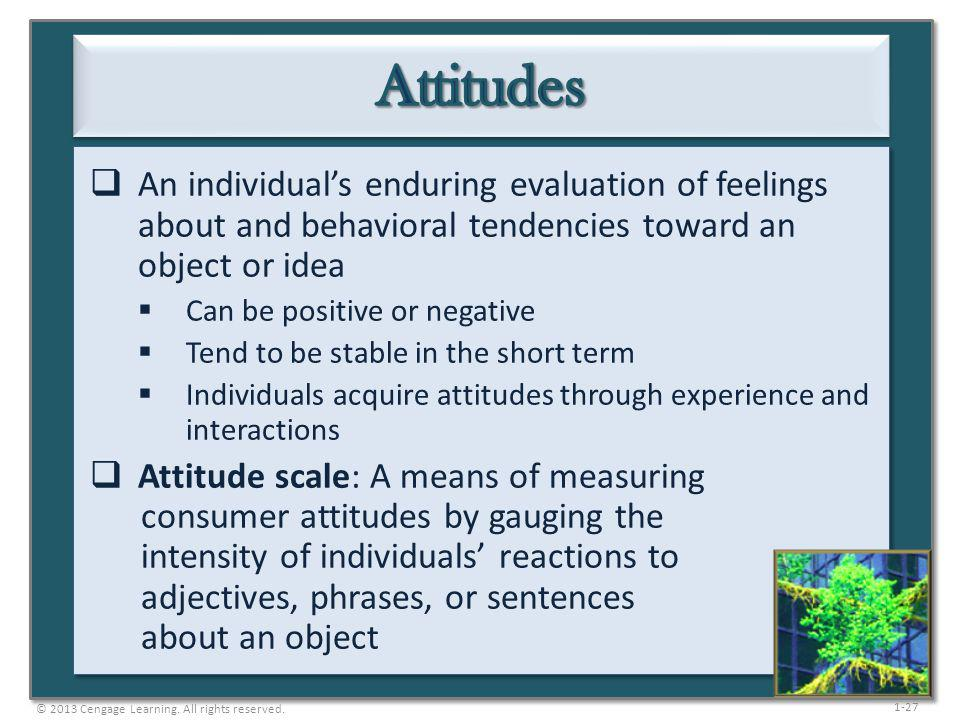Attitudes An individual's enduring evaluation of feelings about and behavioral tendencies toward an object or idea.