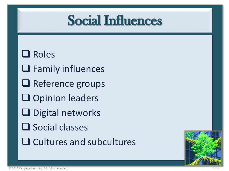 Social Influences Roles Family influences Reference groups