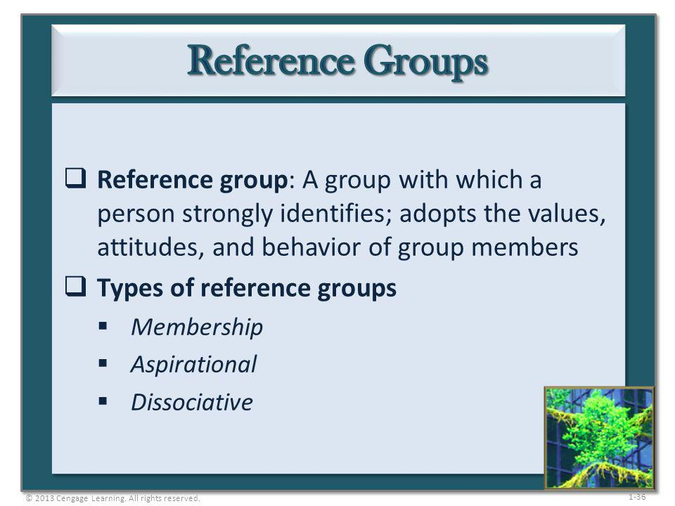 Reference Groups Reference group: A group with which a person strongly identifies; adopts the values, attitudes, and behavior of group members.
