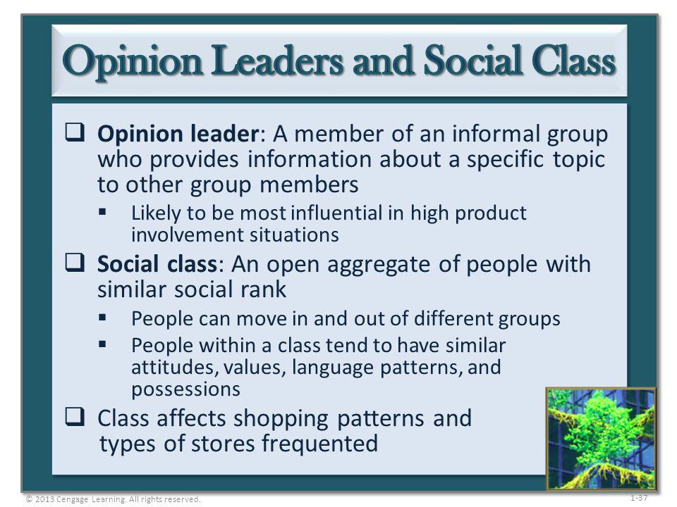 Opinion Leaders and Social Class