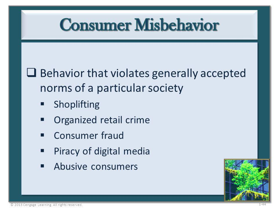 Consumer Misbehavior Behavior that violates generally accepted norms of a particular society. Shoplifting.