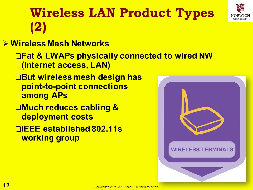 Wireless LAN Product Types (2)