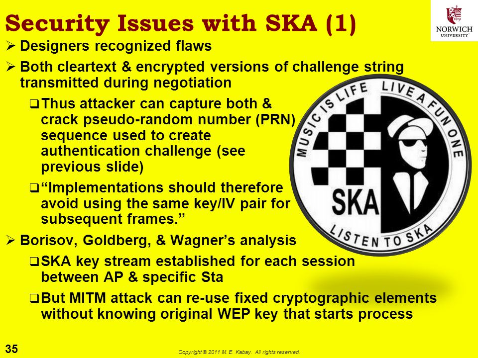 Security Issues with SKA (1)