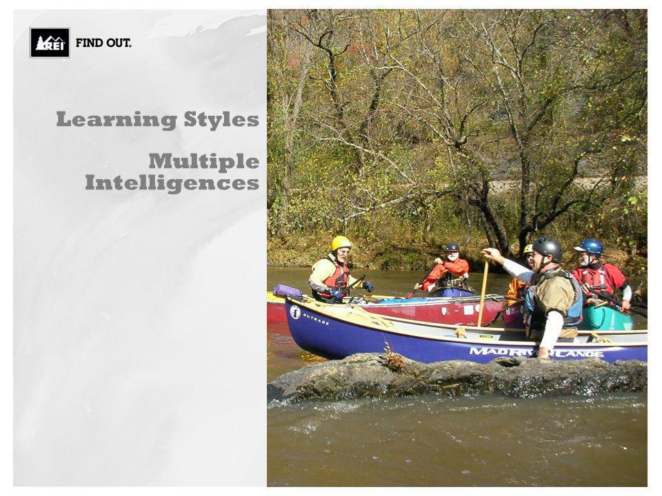Learning Styles Multiple Intelligences