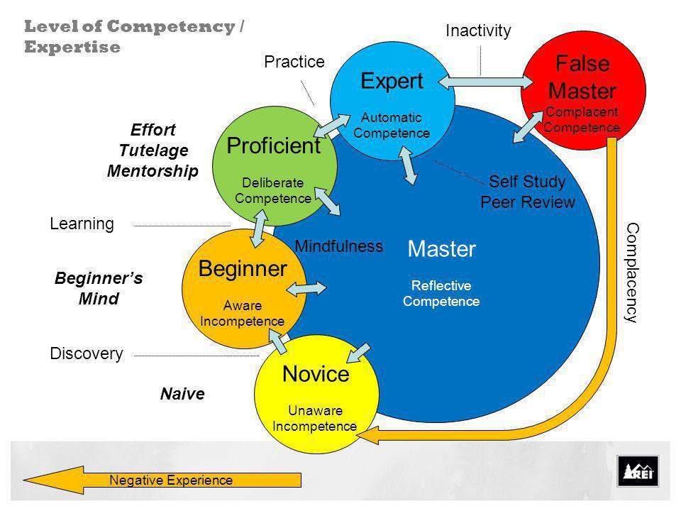 False Master Expert Proficient Master Beginner Novice