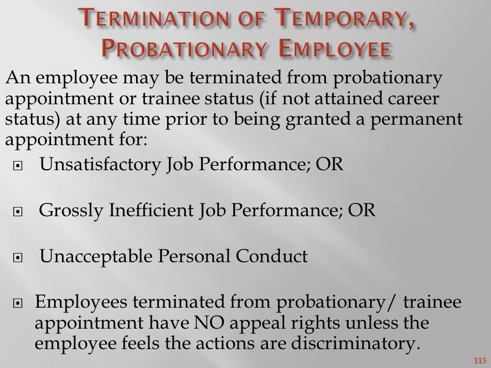 Termination of Temporary, Probationary Employee