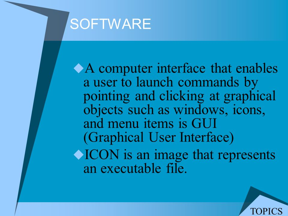 ICON is an image that represents an executable file.