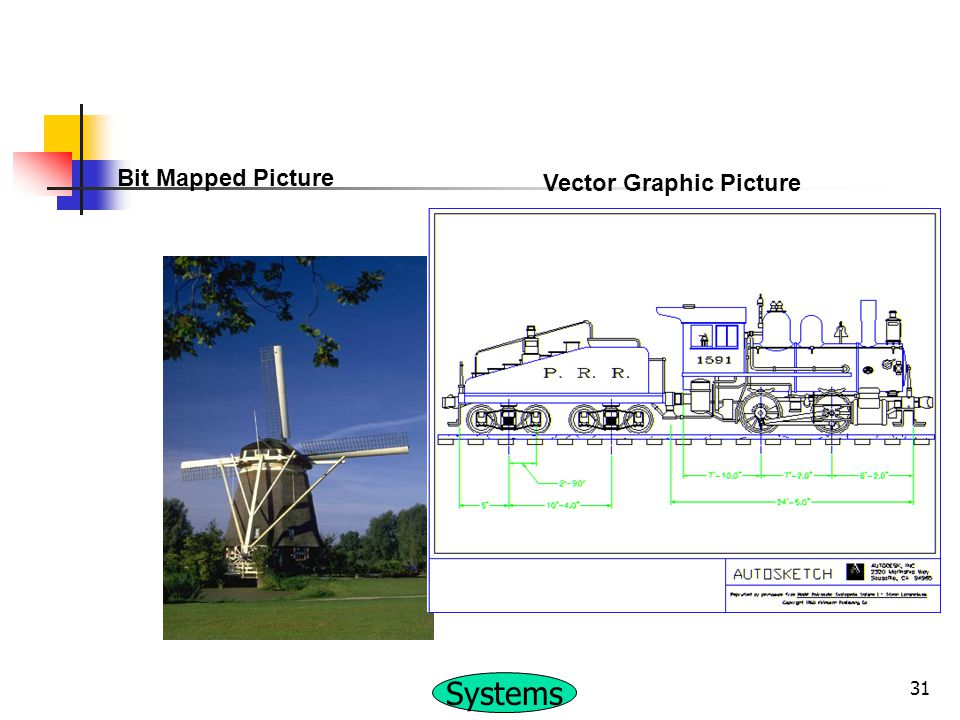 Bit Mapped Picture Vector Graphic Picture