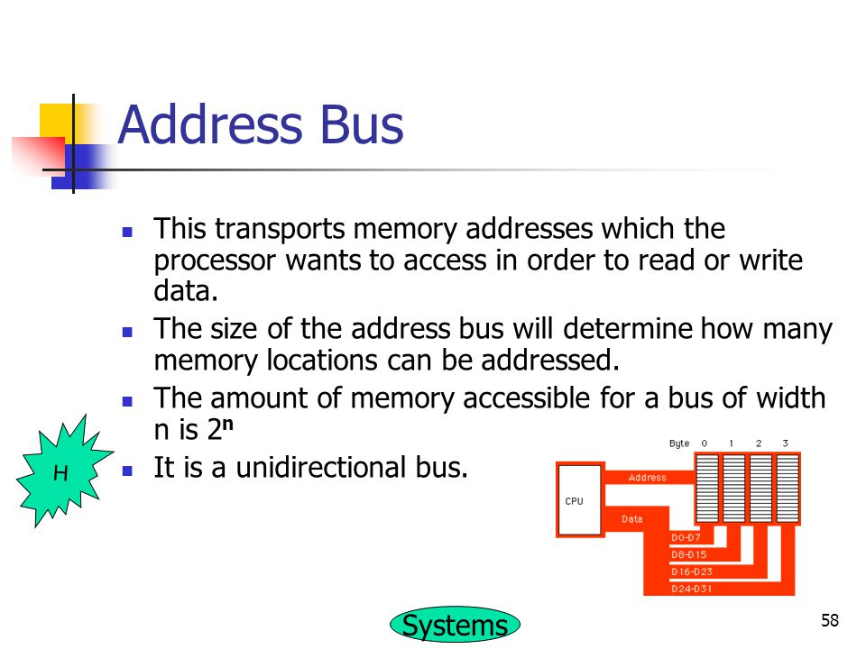 Address Bus This transports memory addresses which the processor wants to access in order to read or write data.