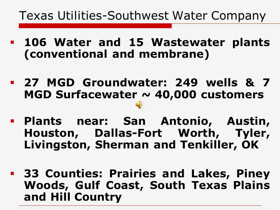 Texas Utilities-Southwest Water Company