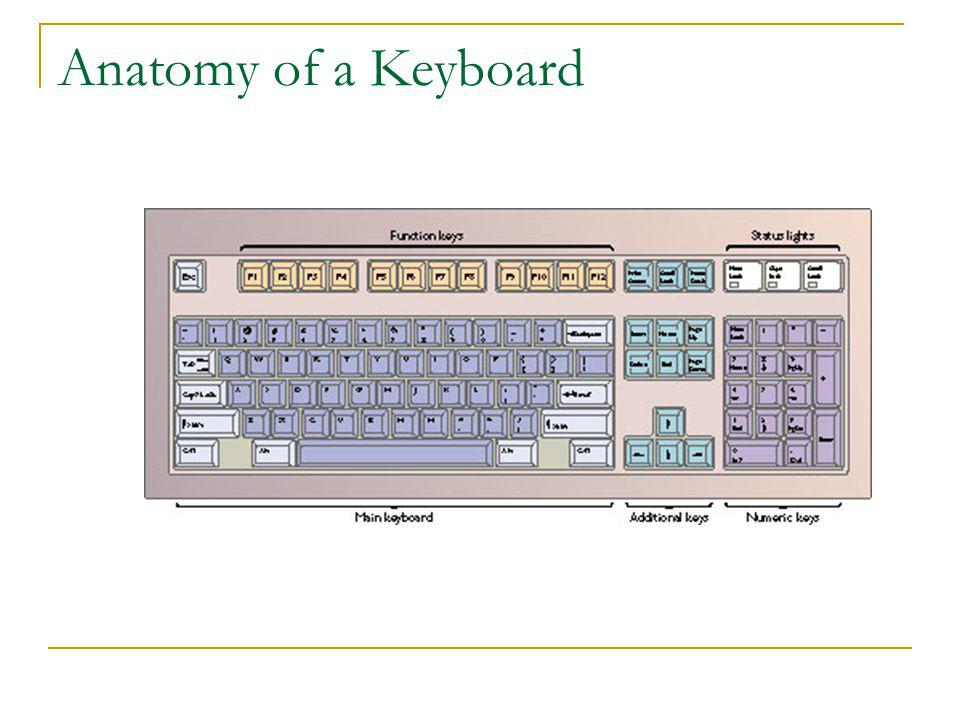 Anatomy of a Keyboard
