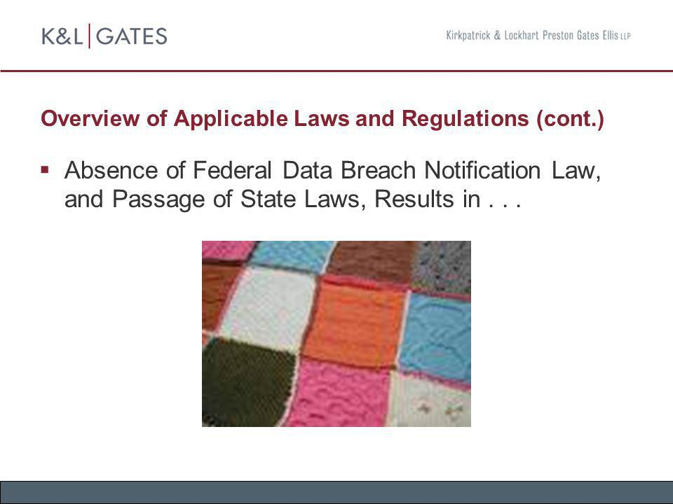 Overview of Applicable Laws and Regulations (cont.)